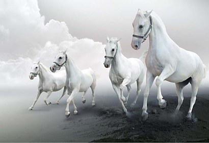 Fototapeta White horses in the clouds 3168