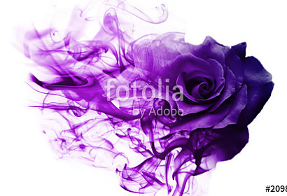 Fototapeta Violet smoke rose abstraction ft-209892810