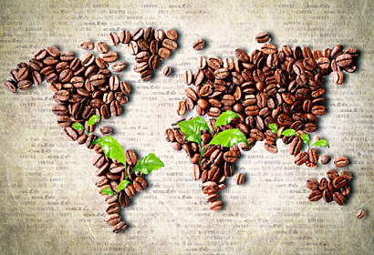 Fototapeta Map of the World Coffee 24857