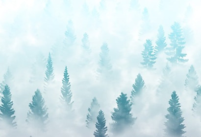Top tapeta Misty forest landscape 99370320